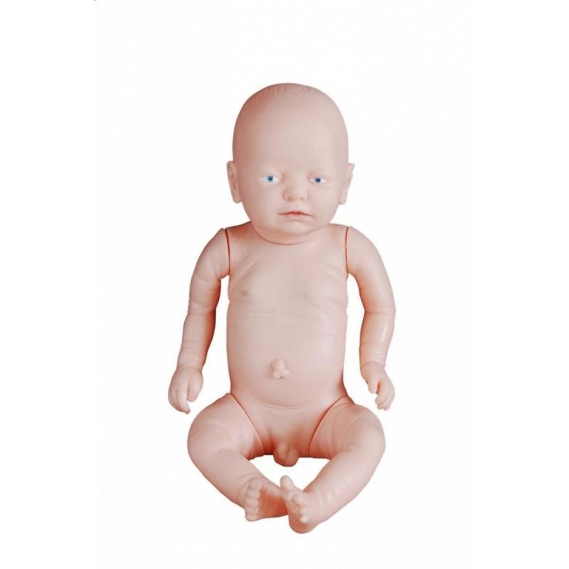Nowy model noworodka
