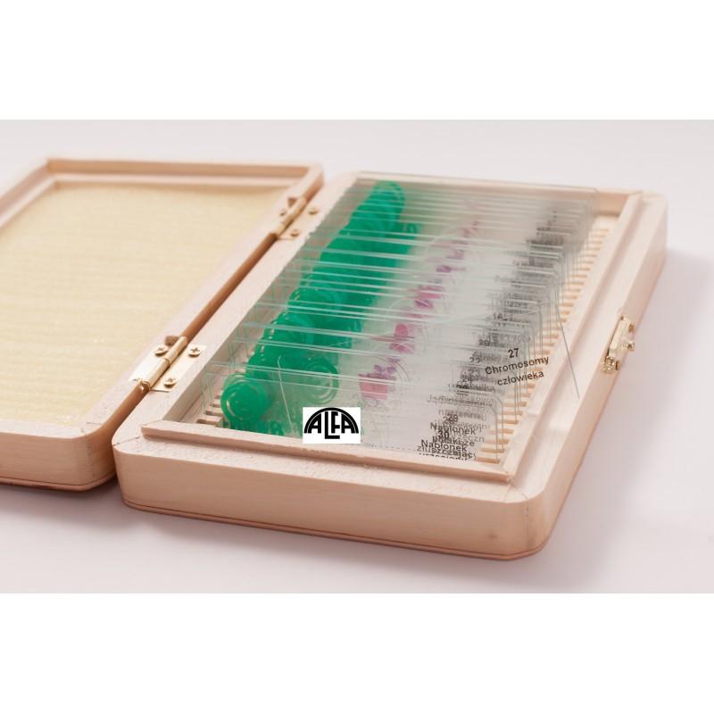 Preparaty tkankowe - zestaw 30 sztuk