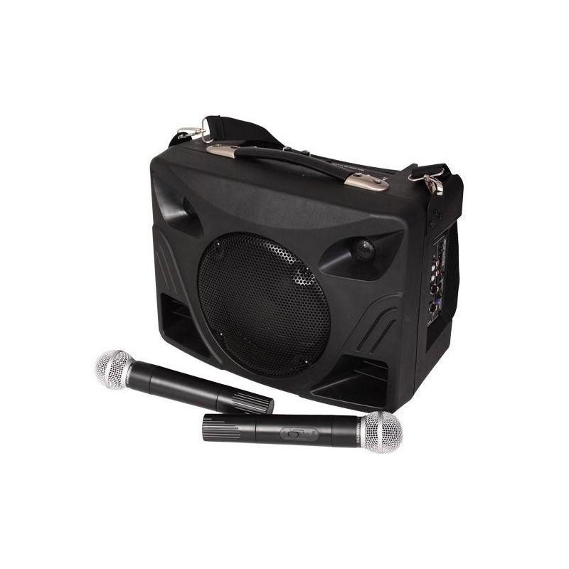 PRZENOŚNE NAGŁOŚNIENIE PORT- 8 cali, dwa mikrofony bezprzewodowe